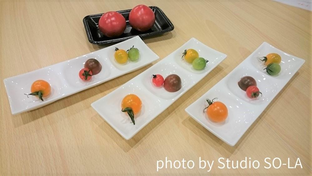 スタジオソラ トマトの食べ比べセミナー